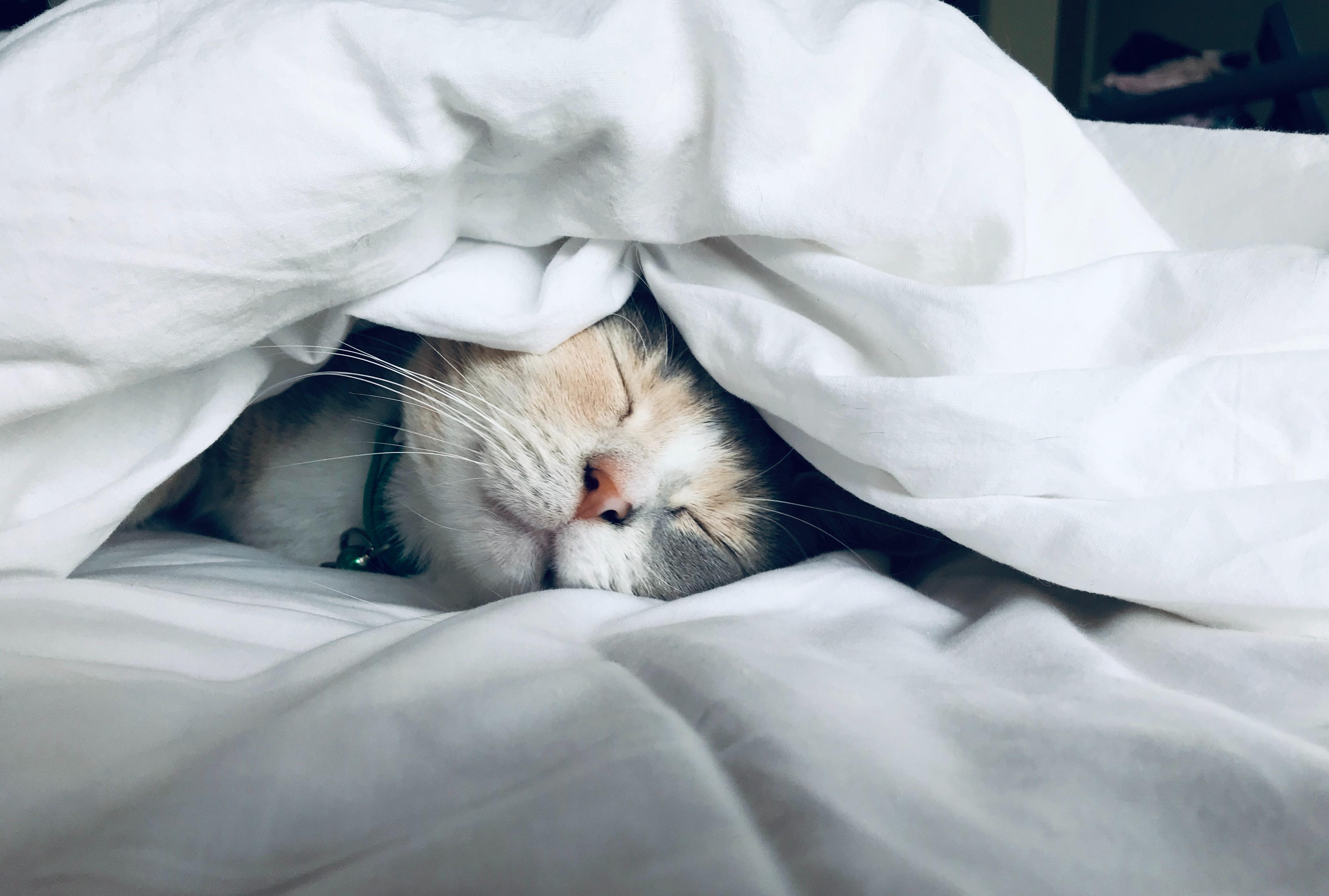 science-backed-sleep